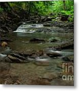 Standing In The Stream Metal Print