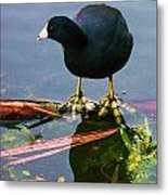 Standing On Water Metal Print