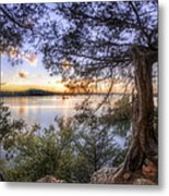 Standing Sentinel - Arkansas - Cadron Settlement Park Metal Print