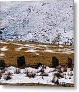 Standing Stone Metal Print