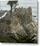 Standing Tall On The Rock Metal Print