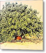 I'm Standing In The Chilly Shadow Under My Tree Metal Print