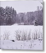 Standing Up To Winter Metal Print