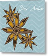 Star Anise Art Metal Print by Christy Beckwith