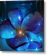 Star Light Plumeria Metal Print