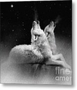Star Talkers Metal Print