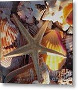 Starfish And Sun Rays Metal Print