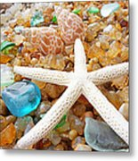 Starfish Art Prints Shells Agates Coastal Beach Metal Print by Baslee Troutman