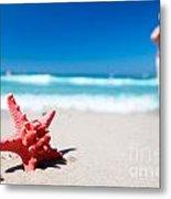 Starfish On Tropical Beach Metal Print