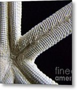 Starfish Underworld Metal Print