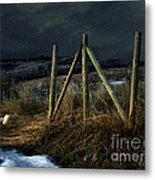 Starless Canadian Sky Metal Print