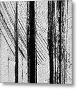 Starlight Behind The Trees Metal Print
