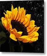 Starlight Sunflower Metal Print