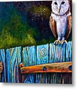 Starry Barn Owl Metal Print