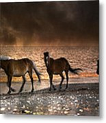 Starry Night Beach Horses Metal Print