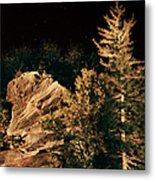 Starry Night In The Blue Ridge Metal Print