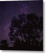 Starry Sky With Silhouetted Oak Tree Metal Print