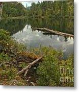 Starvation Lake - British Columbia Metal Print
