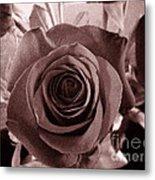 Static Rose Metal Print