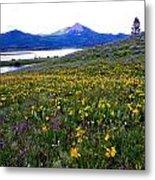 Steamboat Lake And Mt. Hahn Metal Print