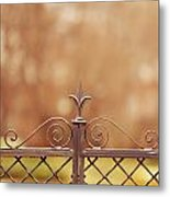 Steel Ornamented Fence Metal Print
