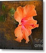 Steely Hibiscus Metal Print by The Stone Age