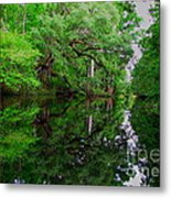 Steinhatchee River Metal Print
