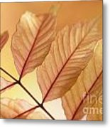Stems Metal Print