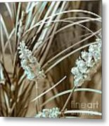 Stems II Metal Print by Yanni Theodorou