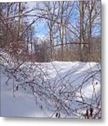 Stems In Snow Metal Print