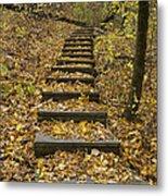 Step Trail In Woods 14 Metal Print