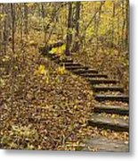 Step Trail In Woods 16 Metal Print