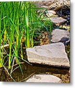 Stepping Stones Across Creek On Lower Palm Canyon Trail In Indian Canyons Near Palm Springs-ca Metal Print
