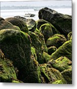 Stepping Stones Park Metal Print