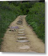 Steps Through Nature Metal Print