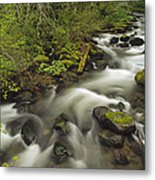 Still Creek Mt Hoodoregon Metal Print
