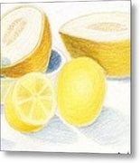 Still Life - Citrus Fruit With Melons Metal Print by Bav Patel