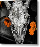 Still Life With Nasturtium 6 Metal Print