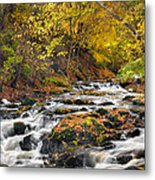 Still River Rapids Metal Print