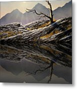 Still Standing Reflections Metal Print