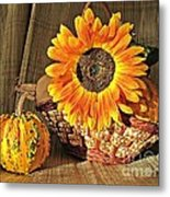 Stillife With  The Sunflower And Pumpkins Metal Print by Halyna  Yarova