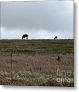 Stillness Metal Print