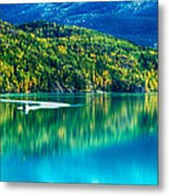 Stillness On The Kenai Metal Print