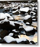 stillness on the Merced River Metal Print
