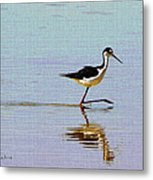 Stilt Out For A Stroll Metal Print