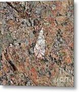 Stone Adornment Metal Print