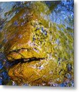 Stone Fish Metal Print