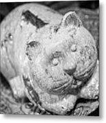 Stone Kitty Metal Print