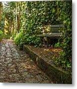 Stone Path Through A Forest Metal Print by Jess Kraft