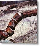 Stone Trees - 336 Metal Print
